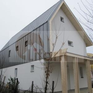 case de lemn_Litarh_Grosu_axo_16_w